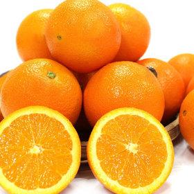고당도 오렌지 블랙라벨 중과 3kg내외(14과내외)