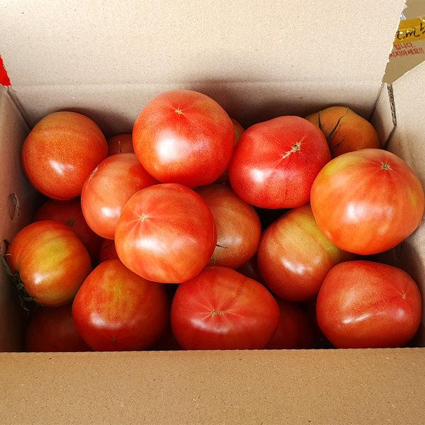 신선하고 단단한 찰토마토  5kg 랜덤크기 상품이미지