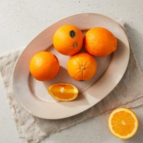 퓨어스펙 특대사이즈  고당도 오렌지
