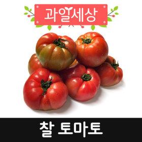 정품.토마토10kg(2-3번과)중간-큰사이즈
