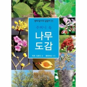 주머니 속 나무 도감-11(생태 탐사의 길잡이)