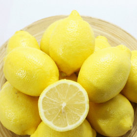캘리포니아 직수입 팬시 레몬 칠레산 팬시레몬 5kg