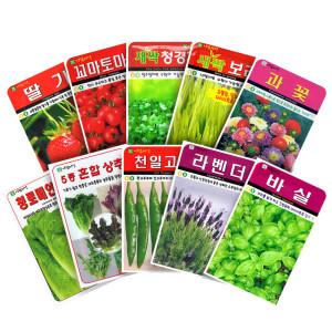 [화분월드]씨앗모음 채소씨앗/꽃씨앗(8천무배)공기정화식물 씨앗