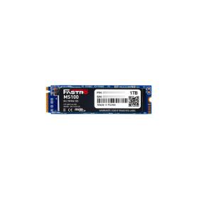 Fastro MS100 1TB