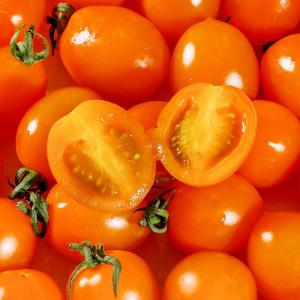 가락마켓 고당도 주황 방울토마토 3kg(750gx4팩)