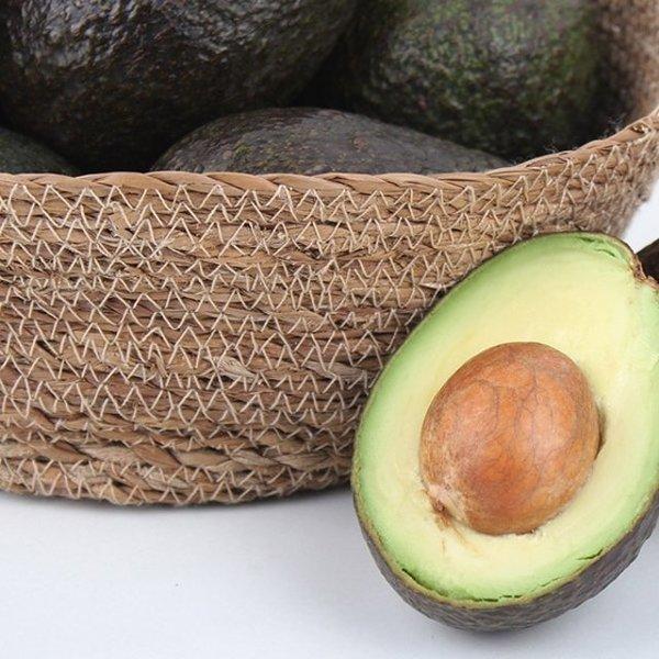 엠파크  生  아보카도 5kg(24~33알) 상품이미지