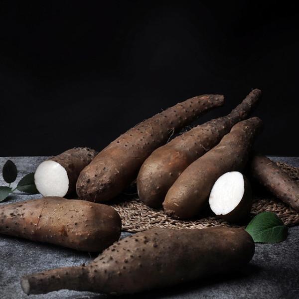 더조은푸드   서안동농협  유명산지 산마 하품 2kg 상품이미지