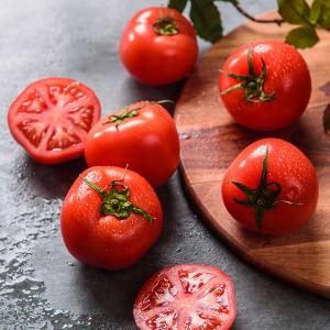 가락마켓 탱글탱글한 찰 완숙토마토 10kg(2번)