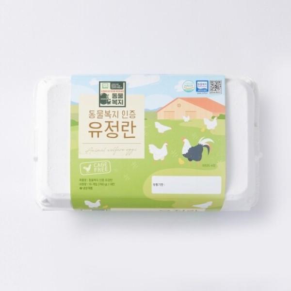 동물복지인증 유정란(대란) (15입/780G) 상품이미지