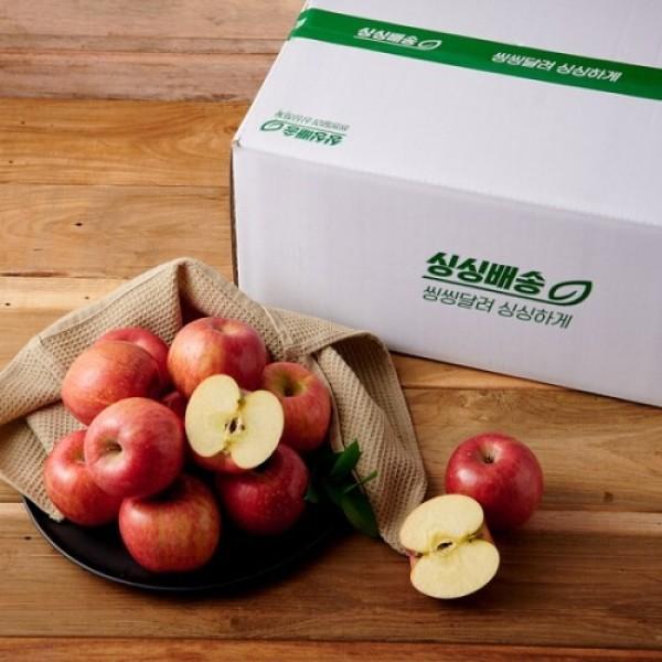 신선직배송  사과 (5KG/박스) 상품이미지