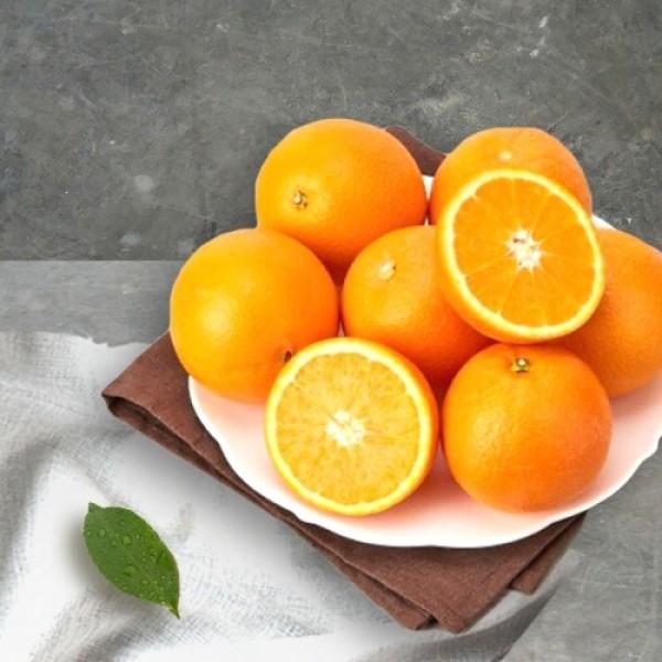 고당도 오렌지 (1개) 상품이미지