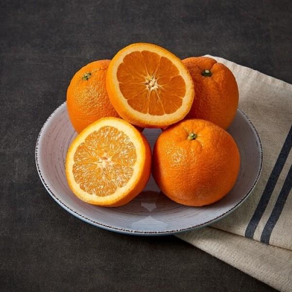 칠레산 오렌지 (개) 상품이미지