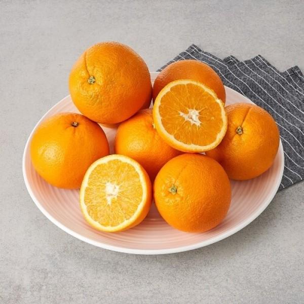 칠레산 오렌지 (4-8입/봉) 상품이미지