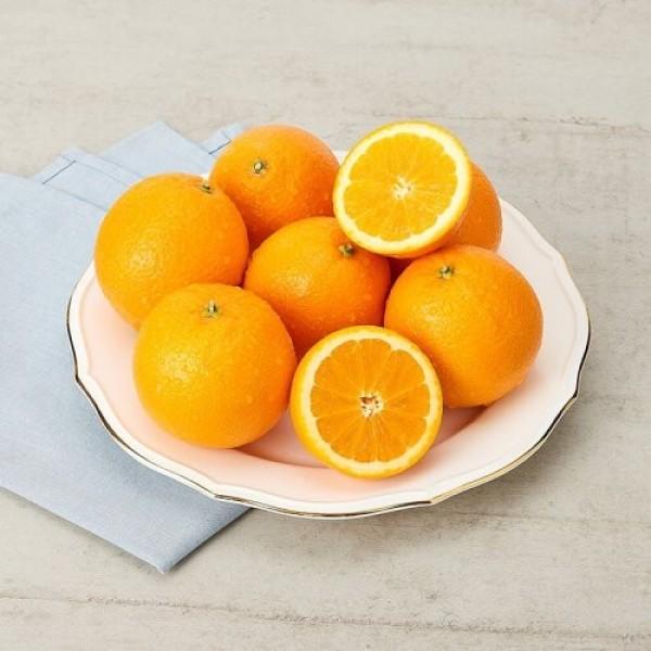 미국산 고당도 오렌지 (6-10입/봉) 상품이미지