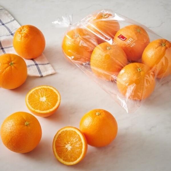 호주산 오렌지 (4-8입/봉) 상품이미지