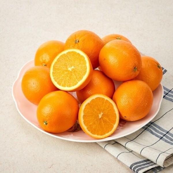 미국산 고당도 오렌지 상품이미지