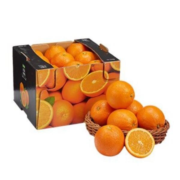 미국산 오렌지 (16-23입/박스) 상품이미지
