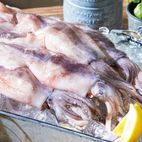 최다구성  깔끔한 손질 오징어 총 27마리(2.7kg 이상)
