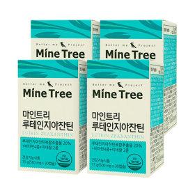 마인트리 루테인지아잔틴 4박스 (4개월분) +크릴오일