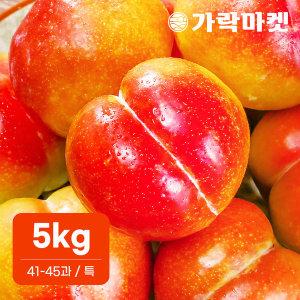 가락마켓  추희 자두 5kg (41-45과) (특)