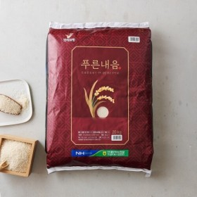 보령 푸른내음쌀 (20KG)