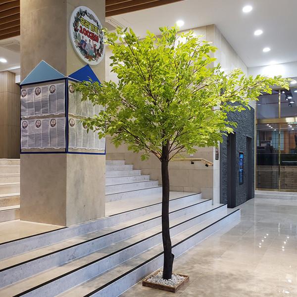 특허받은 자작나무/잎교체가능/인조나무/왕벚꽃나무 상품이미지