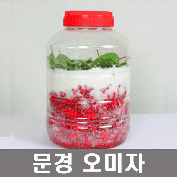 추천 문경 생 오미자 당절임 10kg/생과/엑기스/청 상품이미지