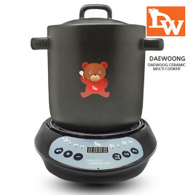 DAEWOONG Electric steamer boiling pot double boiler multi-use slow cooker