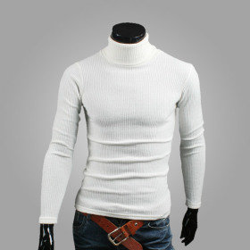 [HooAngs] Men`s turtleneck collection / slim fit / solid color / ribbed /