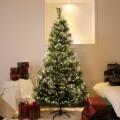 크리스마스트리 무장식트리 전나무/솔트리 1.3-2.1M