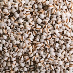 [아침농산]국산 율무2kg 경기 연천산
