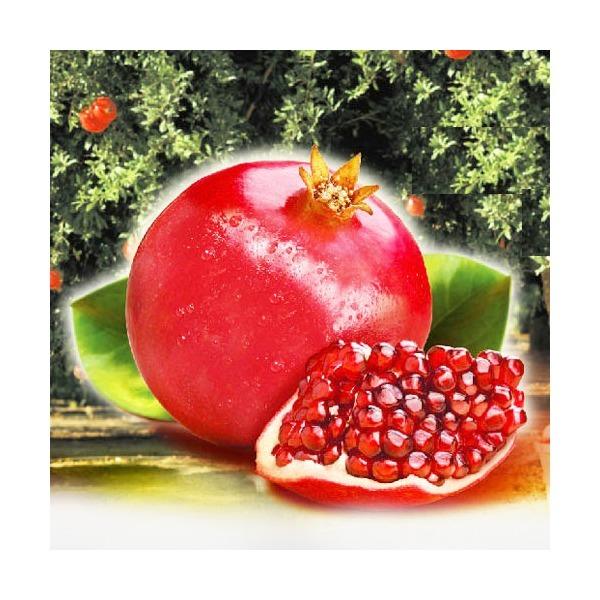 석류 5kg(10과-18과)/ 냉동석류 석류즙 석류쥬스 상품이미지