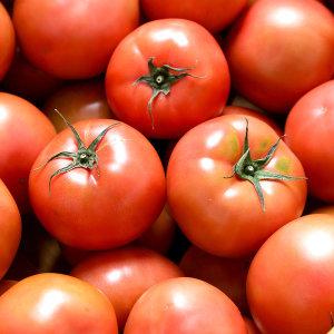 [장터할매]만족도98% 완숙토마토 한정특가 무료배송