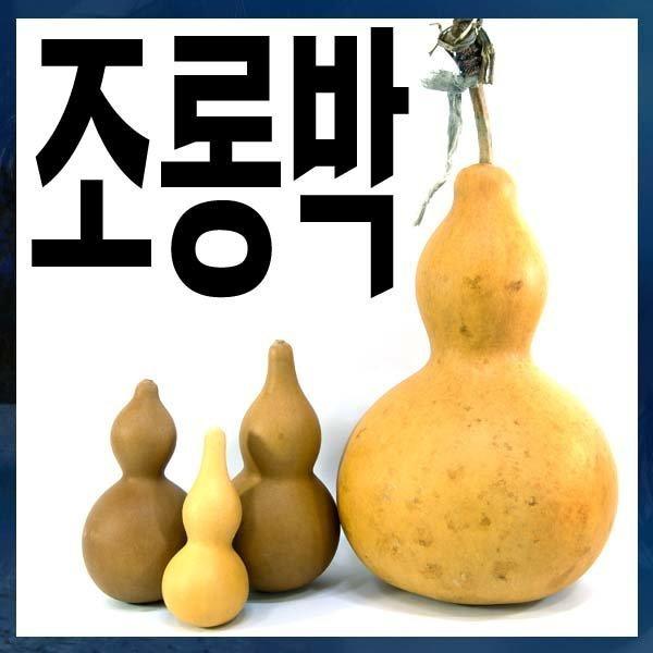 A082/조롱박/대/박열매/호롱박/표주박 상품이미지