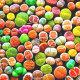 리톱스 믹스씨앗(100립)-고급280여종혼합 다육이씨앗 상품이미지