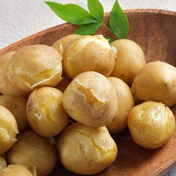 감자 5kg 특 (찜용/요리용) 상품이미지