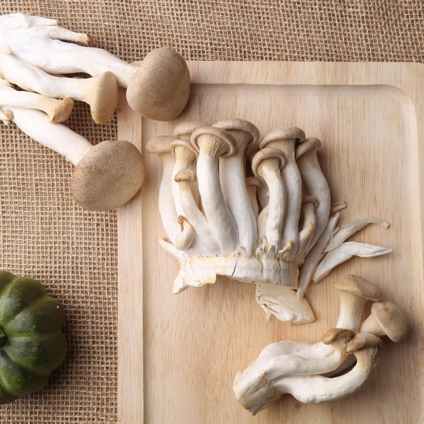머쉬마루버섯 2입 봉 상품이미지