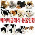 강아지인형 모음/고양이/물개/애착/선물/곰/동물인형