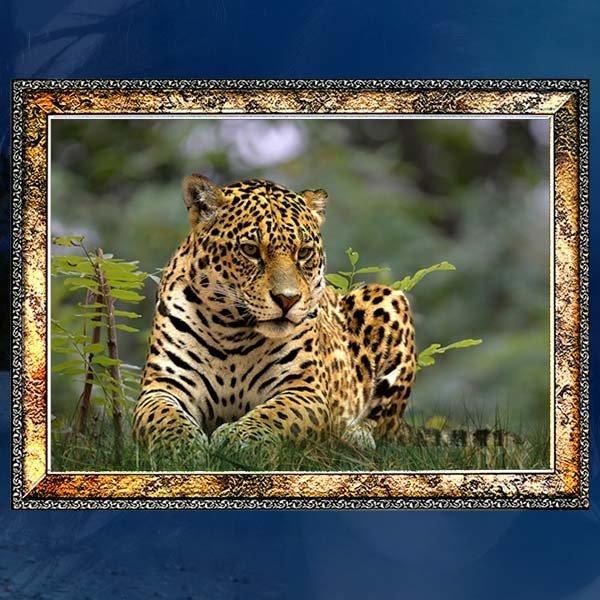 A272-4/표범액자/호랑이액자/호랑이그림/호랑이사진 상품이미지