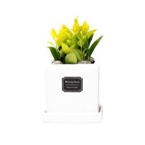 아침향기 장인수공예품 옹기 화분 공기정화식물 56종
