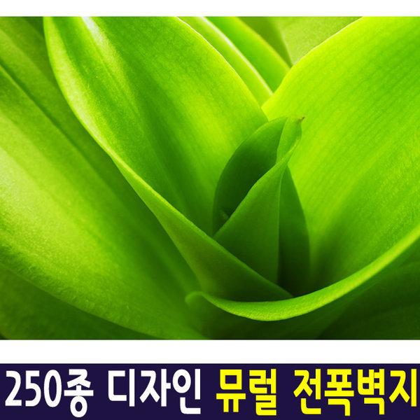 신한 뮤럴아트 내추럴그린/ 뮤럴벽지 실크 포인트벽지 상품이미지