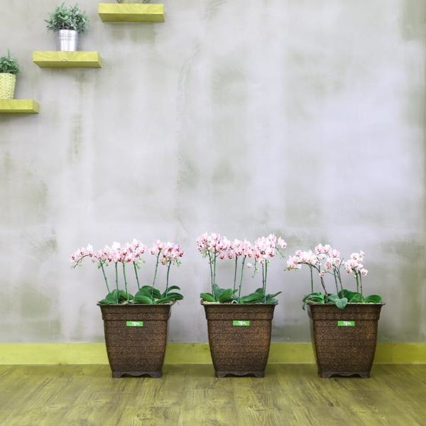 담따  스퀘어 라인 아름다운 꽃이 잘 어울리는 화분 상품이미지