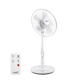 Home Use Business Use Standing Type Remote Control Electric Fan Popular Item WA1700R