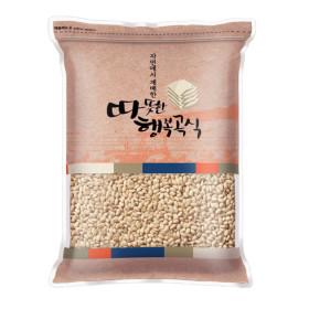 국산 발아 현미찹쌀 1kg