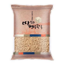 발아현미 1kg 국내산 /2019년산 햇곡