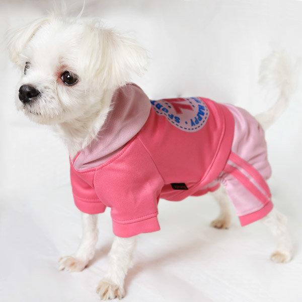 애견옷 올인원 모음 강아지옷/애견용품/바지/티 상품이미지
