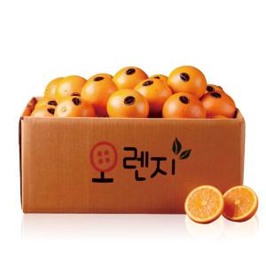 퓨어스펙 고당도 오렌지 23과/2개 구매시 5과 증정