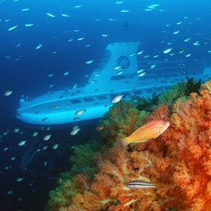 가을여행주간/제주 서귀포잠수함/제주잠수함/제주도잠수함 이용권