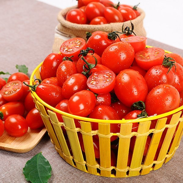 속이 꽉찬 대추 방울토마토 1~2번과 1kg 상품이미지