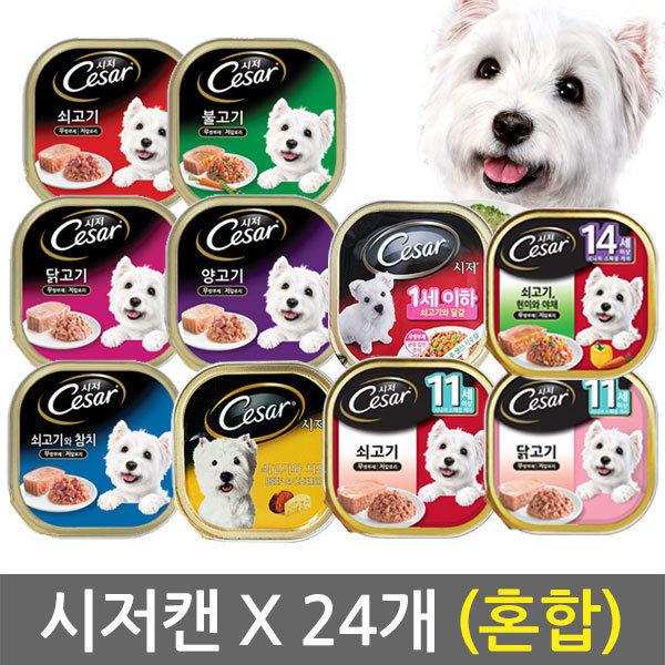 시저캔100g 24개 6개씩자유선택/사료/강아지/애견간식 상품이미지